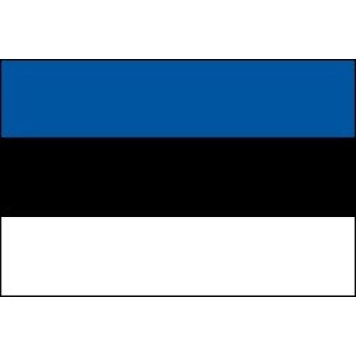 Описание и фото флага, эстонии и герба страны