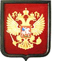 Фото герба России - пластик.